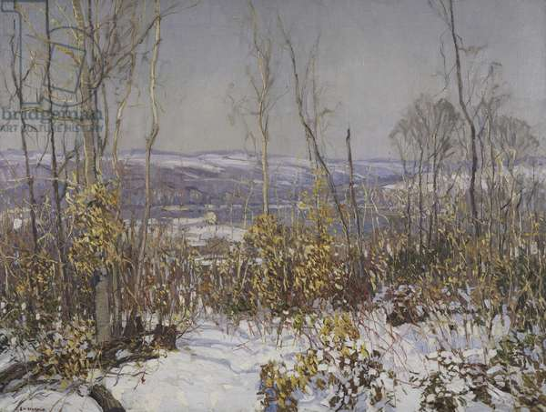 Overlooking the Delaware, c.1919 (oil on canvas)