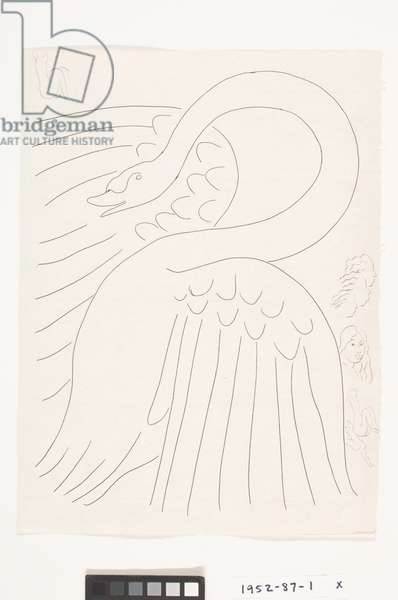A Swan (with Etched