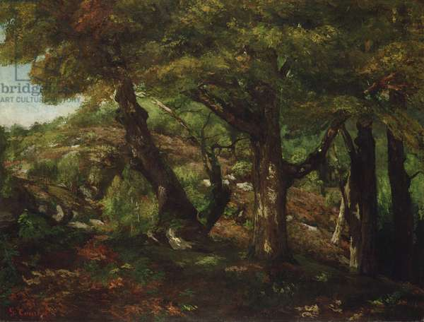 The Fringe of the Forest, c.1856 (oil on canvas)