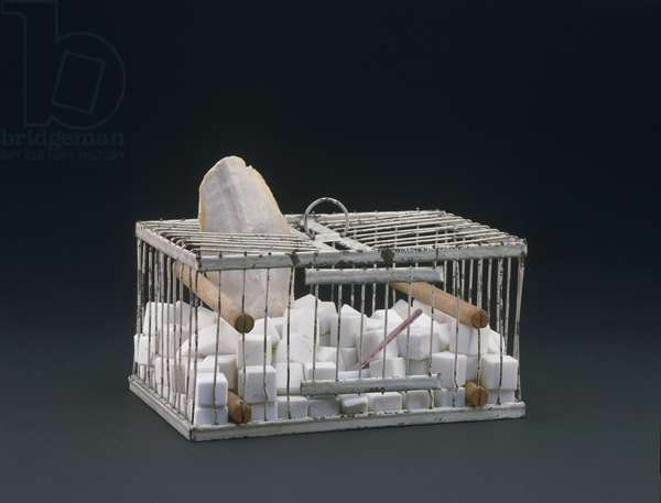 Why Not Sneeze, Rose Sélavy? 1921 (birdcage, wood, marble, porcelain, thermometer & cuttlebone)