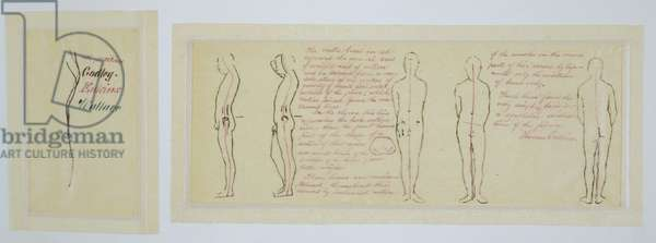 Comparative Analysis of Anatomical Photographs, c.1883 (pen, ink & graphite on thin tan wove paper)