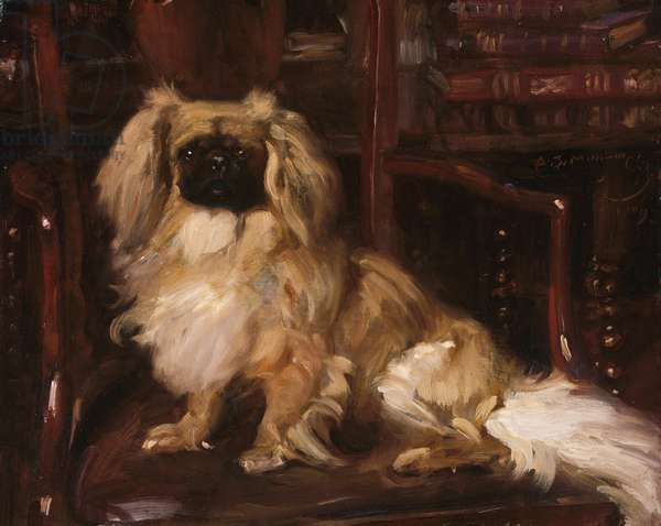 Pekingese, 1909 (oil on wood)