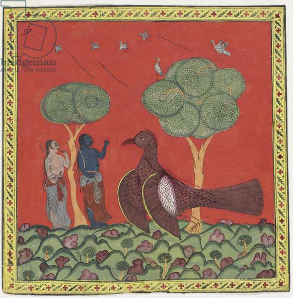 Dying Jatayus Tells Rama and Lakshmana about Sita, c.1750 (opaque w/c on paper)