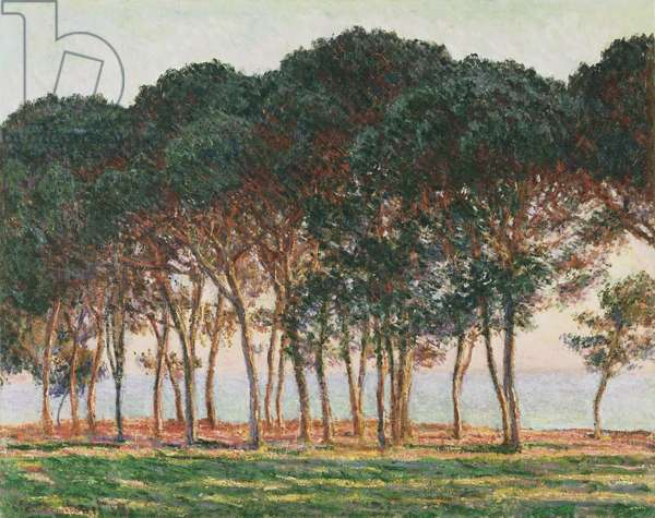 Under the Pines, Evening, 1888 (oil on canvas)