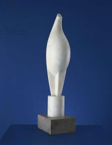 Maiastra, 1912 (white marble)