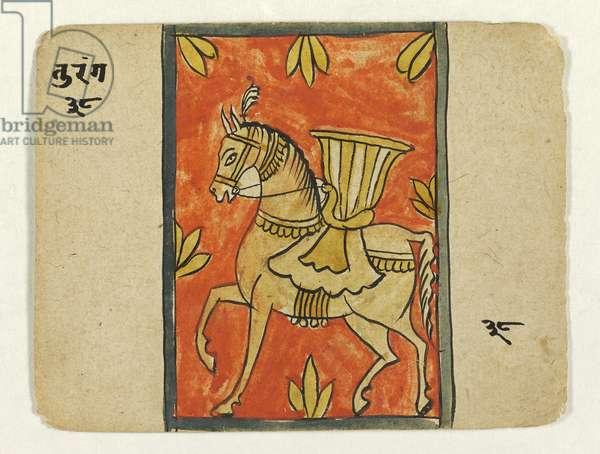 Turanga (horse), c.1700 (opaque w/c on paper)