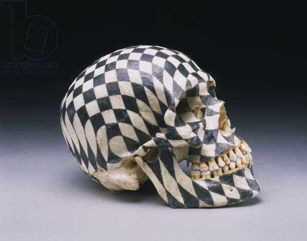 Black Kites, 1997 (graphite on skull)