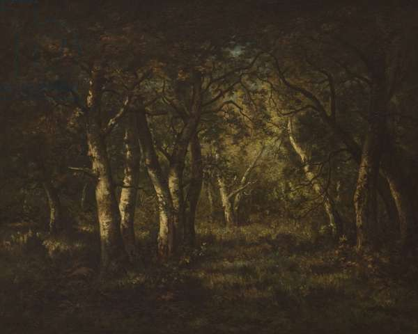 Interior of a Forest, 1862 (oil on canvas)
