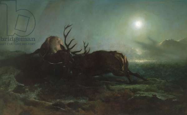 Night (Two Stags Battling by Moonlight), 1853 (oil on canvas)