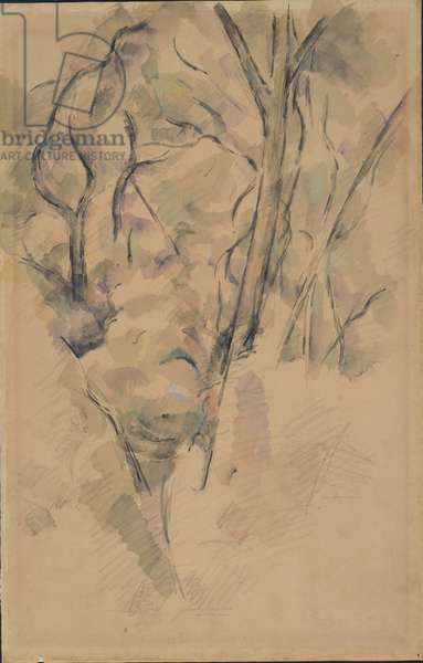 Trees and Rocks, c.1890 (w/c & graphite on beige wove paper)