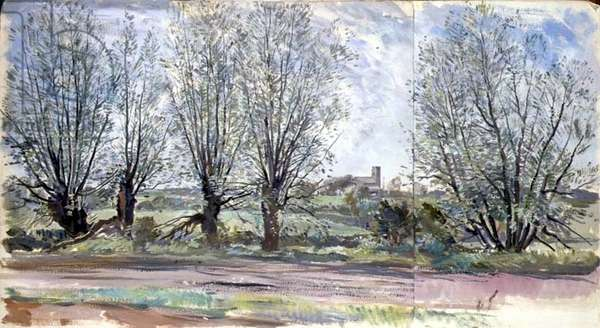 Willows, 1955