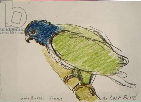 Icarus, The Lost Bird