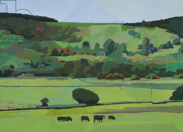 Burpham Cattle, 2012 (oil on canvas)