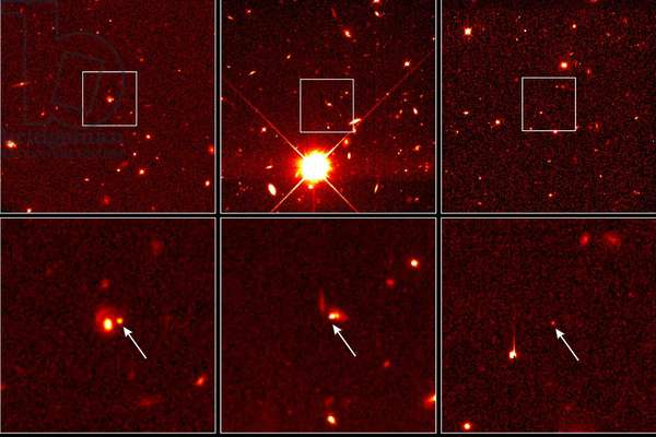 Supernovae distant - These Hubble Space Telescope images pinpoint three distant supernovae, which exploded and died billions of years ago. Scientists are using these faraway light sources to estimate if the universe was expanding at a faster rate long ago and is now slowing down. Images of SN 1997cj are in the left hand column; SN 1997ce, in the middle; and SN 1997ck, on the right. All images were taken by the Hubble telescope's Wide Field and Planetary Camera 2. The top row of images are wider views of the supernovae. The supernovae were discovered in April 1997 in a ground - based survey at the Canada - France - Hawaii Telescope on Mauna Kea, Hawaii. Once the supernovae were discovered, the Hubble telescope was used to distinguish the supernovae from the light of their host galaxies. A series of Hubble telescope images were taken in May and June 1997 as the supernovae faded. Six Hubble telescope observations spanning five weeks were taken for each supernova. This time series enabled scientists to measure the brightness and create a light curve. Scientists then used the light curve to make an accurate estimate of the distances to the supernovae. Scientists combined the estimated distance with the measured velocity of the supernova's host galaxy to determine the expansion rate of the universe in the past (5 to 7 billion years ago) and compare it with the current rate. These supernovae belong to a class called Type Ia, which are considered reliable distance indicators. Looking at great distances also means looking back in time because of the finite velocity of light. SN 1997ck exploded when the universe was half its present age. It is the most remote supernova ever discovered (at a redshift of 0.97), erupting 7.7 billion years ago. The two other supernovae exploded about 5 billion years ago. SN 1997ce has a redshift of 0.44; SN 1997cj, 0.50. SN 1997ck is in the constellation Hercules, SN 1997ce is in Lynx, just north of Gemini; and SN 1997cj is in Ursa Major, ne