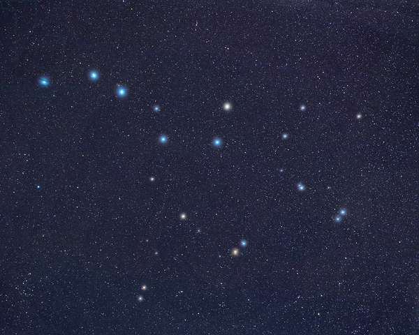 Constellations of the Great Bear and Hunting Dogs - Constellations of Ursa Major and Canes Venatic
