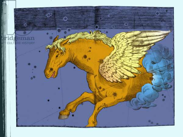 Constellation Pegase - Constellation of Pegasus - Uranometria by Johannes Bayer 1661 Recolorise by us Uranometria of Johannes Bayer 1661. Recolored