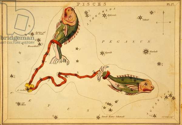 Constellation of Fish - Constellation of Pisces - Plate extracted from the Mirror of Urania by Jehoshaphat Aspin - 1825 Urania's Mirror, by Jehoshaphat Aspin, 1825