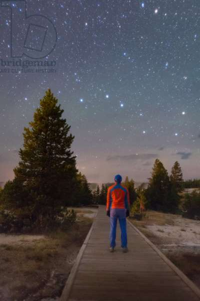 Great Bear Watching - Contemplating the night sky - Constellation of the Great Bear over a road in Yellowstone National Park. A man looks at the night sky from a boardwalk in Yellowstone National Park. The Big Dipper is visible above him