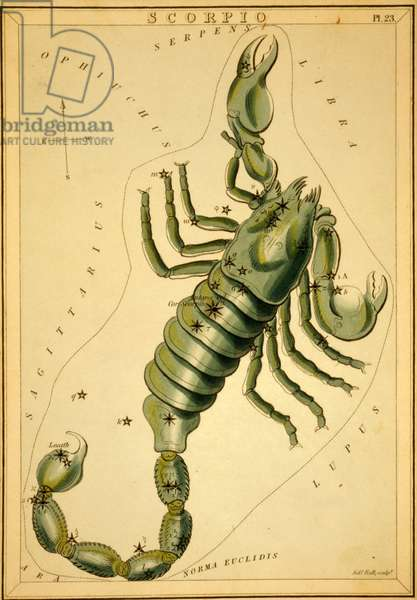 Constellation of Scorpio - Constellation of Scorpius - Plate extracted from the Mirror of Urania by Jehoshaphat Aspin - 1825 Urania's Mirror, by Jehoshaphat Aspin, 1825