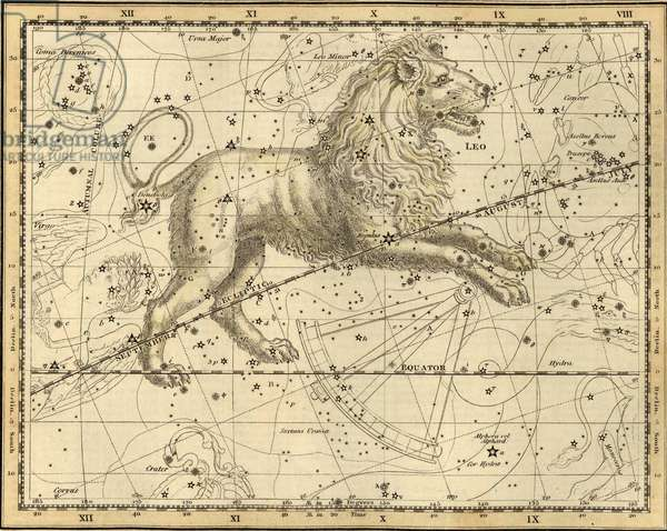 Lion Constellation - Leo constellation - Plate from the Celeste Atlas by Alexander Jamieson - 1822 Celestial atlas of Alexander Jamieson. 1822