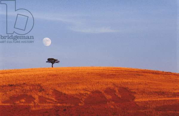 Moon in daylight - Moon in daylight - Country landscape and Moon. (Iran). Landscape and moonrise. Iran