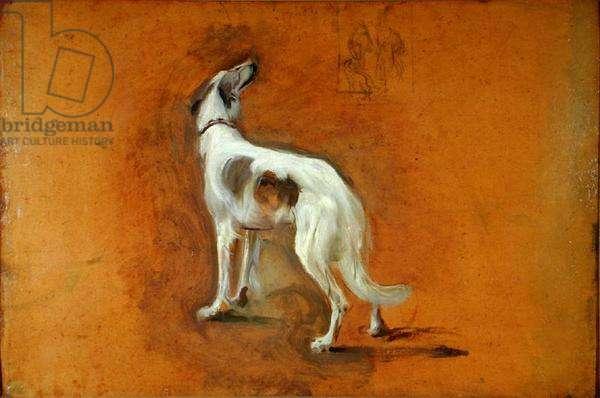 The Kaiser's Dog (oil on board)