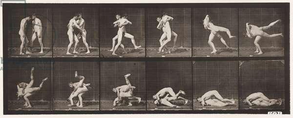 Plate 347. Wrestling, Graeco-Roman, 1885 (collotype on paper)