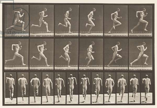 Plate 62. Running at Full Speed., 1872-85 (collotype on paper)