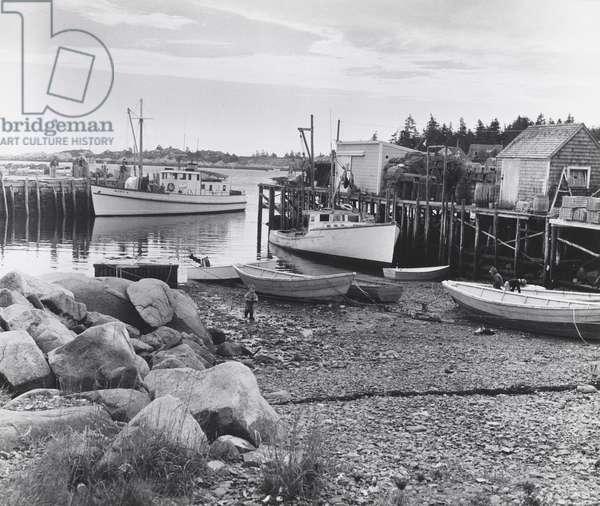 Maine Coast, 1950s (vintage gelatin silver print)