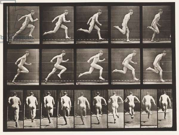Plate 63. Running at Full Speed., 1872-85 (collotype on paper)