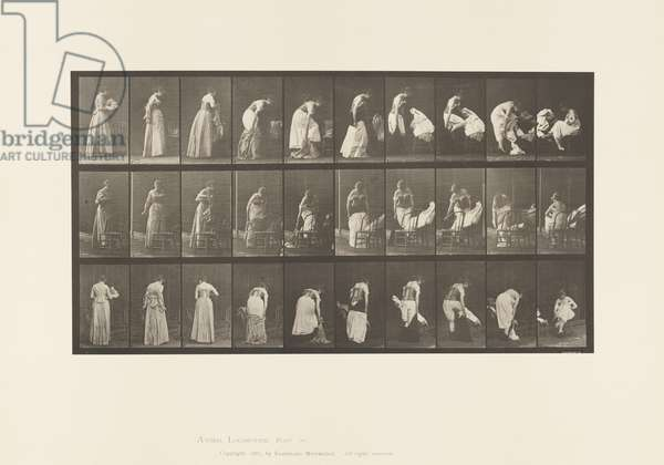 Plate 497. Miscellaneous Phases of the Toilet, 1885 (collotype on paper)