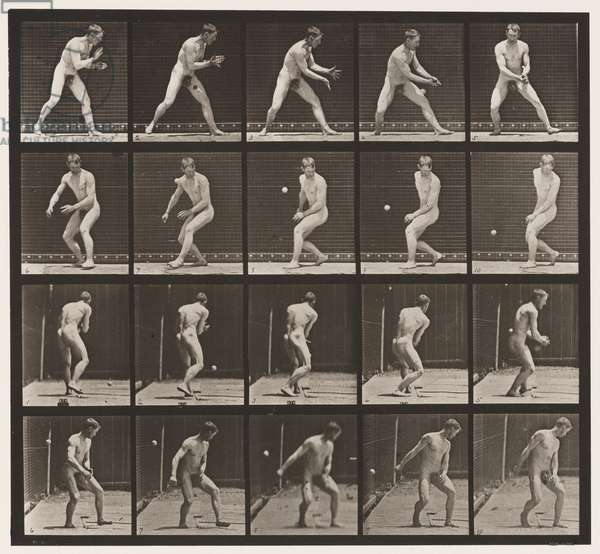 Plate 288. Base-ball; Error, 1885 (collotype on paper)