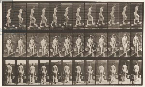Plate 82. Ascending Incline, Bucket of Water in Each Hand, 1872-85 (collotype on paper)