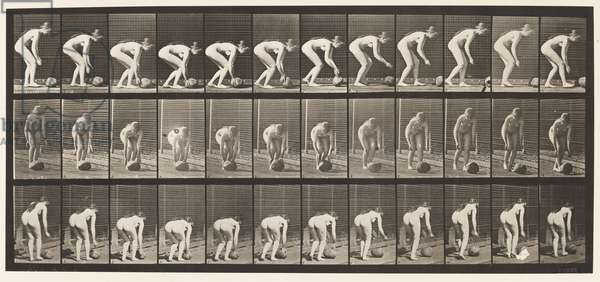 Plate 442. Stooping, and Rolling A Stone on the Ground, 1872-85 (collotype on paper)