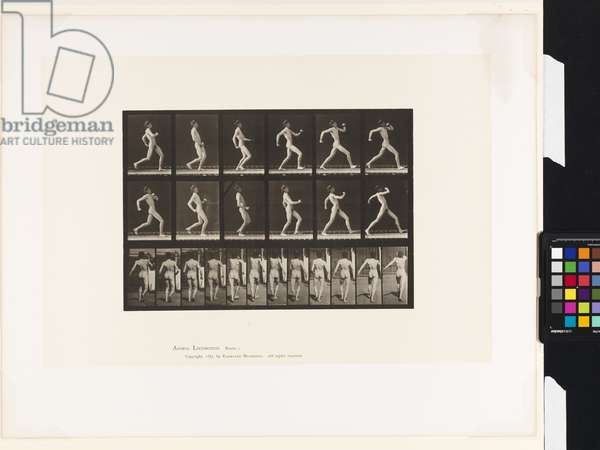 Plate 7.Walking, 1885 (collotype on paper)