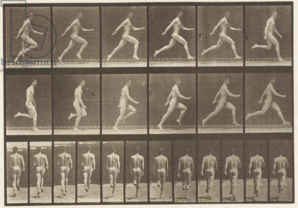 Plate 64. Running at Full Speed, 1872-85 (collotype on paper)