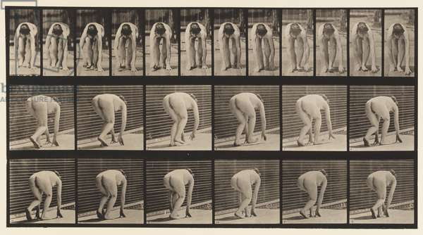 Plate 184. Walking on Hands and Feet, 1872-85 (collotype on paper)