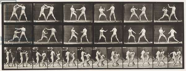 Plate 329. Boxing; (Shoes), 1872-85 (collotype on paper)