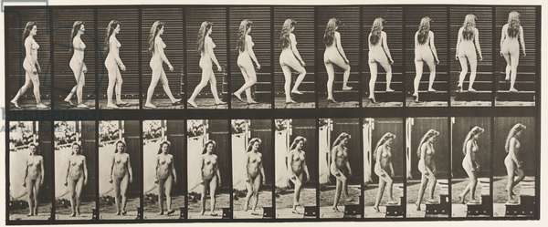 Plate 99. Turning and Ascending Stairs, 1872-85 (collotype on paper)