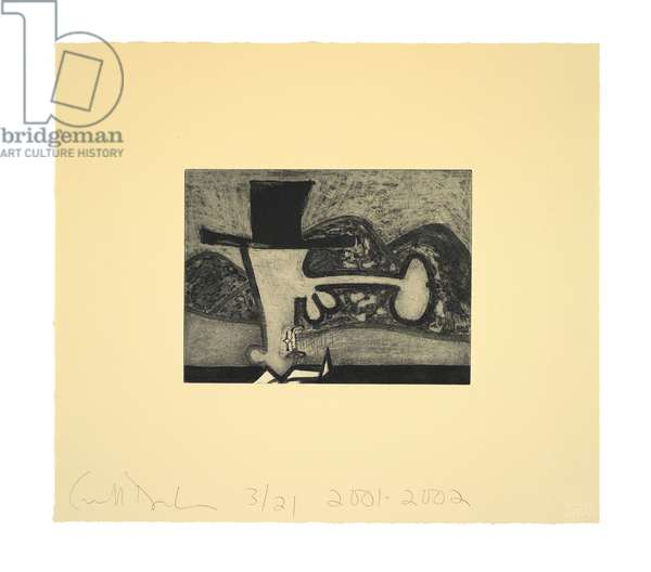 Atmospherics (Hills), 2001-02 (etching on Queen Anne Bible Yellow Ruscombe paper)