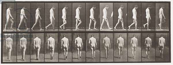 Plate 549. Epilepsy; Walking,1885 (collotype on paper)