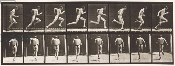 Plate 61. Running at Full Speed (Imperfect Action, Shoes), 1872-85 (collotype on paper)