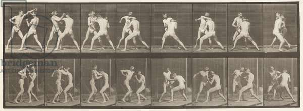 Plate 342. Boxing; Open Hand, 1872-85 (collotype on paper)