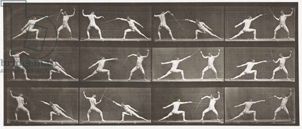 Plate 349. Fencing, 1872-85 (collotype on paper)