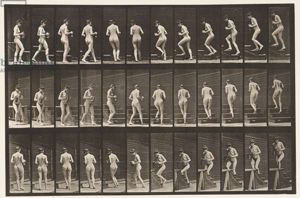 Plate 103. Turning and Ascending Stairs, Pitcher & Goblet in Hands, 1872-85 (collotype on paper)