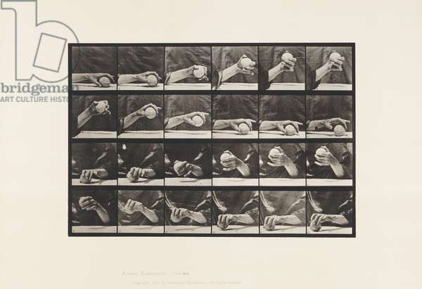 Plate 534. Movement of the Hand; Lifting a Ball, 1885 (collotype on paper)