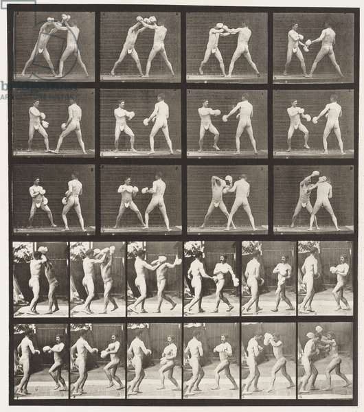 Plate 334. Boxing; With Gloves (Shoes), 1872-85 (collotype on paper)