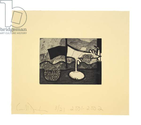 Atmospherics (Pond), 2001-02 (etching on Queen Anne Bible Yellow Ruscombe paper)