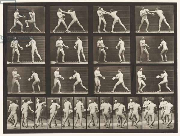 Plate 335. Boxing; With Gloves (Shoes), 1872-85 (collotype on paper)