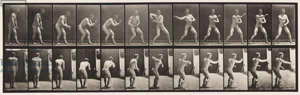 Plate 285. Base-ball; Catching and Throwing, 1885 (collotype on paper)